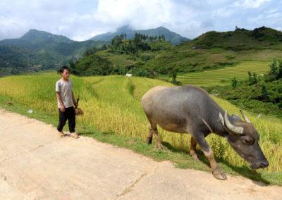 Sapa, Vietnam | August 2014